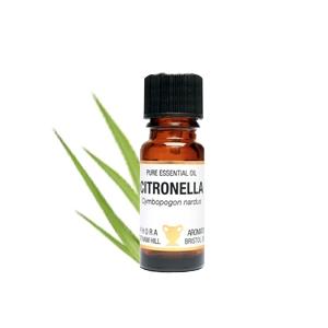 Eteerinen öljy Sitronella - Citronella 10 ml-0