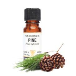 Eteerinen öljy Mänty - Pine 10 ml-0
