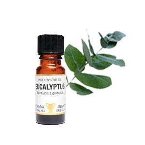 Eteerinen öljy Eukalyptus 10 ml-0
